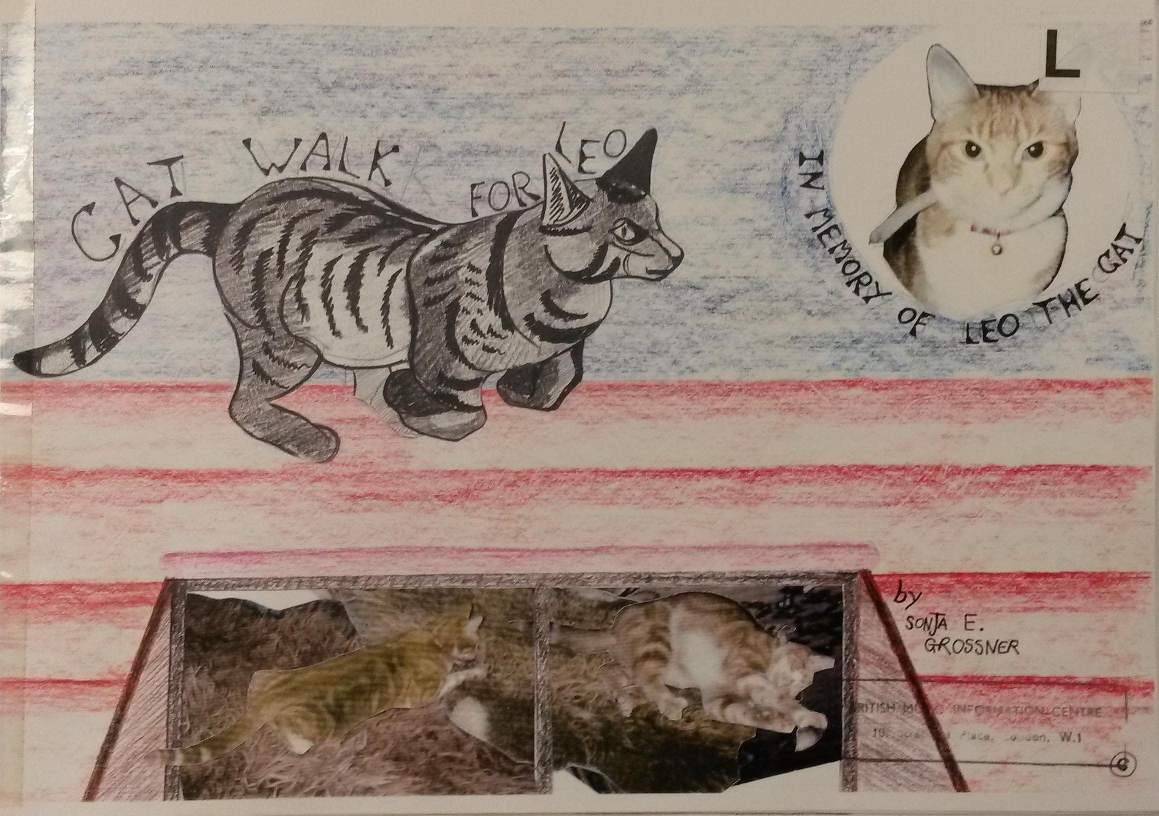 Cat walk for Leo by Sonja E Grossner